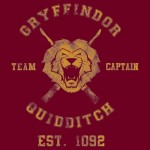 gryffindor-quidditch-athletic
