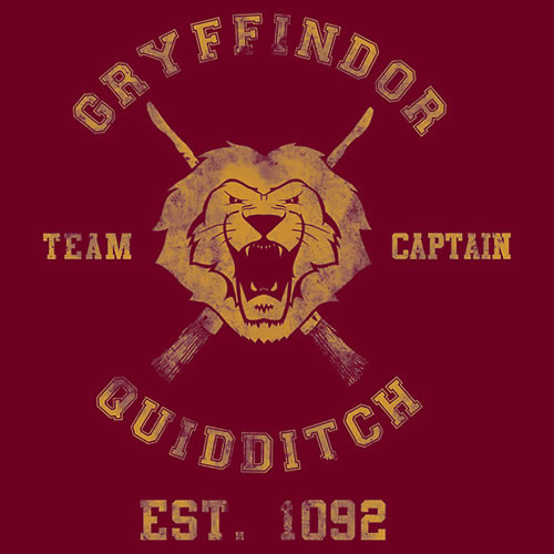 Gryffindor Quidditch Team Captain