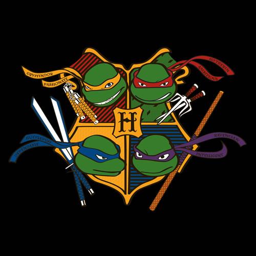 tmnt-at-hogwartz