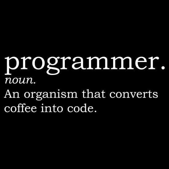 Definition - Programmer